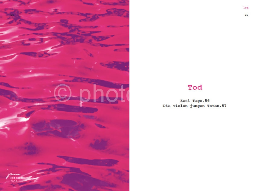 Leseprobe-PINK-Tod